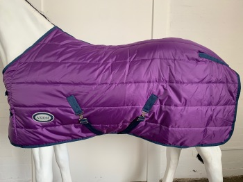 AXIOM PURPLE STABLE 300g HORSE RUG